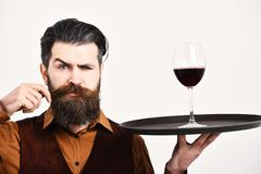 Barman with strict face holds alcoholic drink curling mustache. Service and restaurant catering concept. Man with beard. Holds alcohol on white background Stock Image