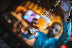 Barmen is pouring lager beer to glass from beer taps. royalty free stock images
