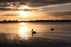 Barmera. Sunset at Lake Bonney July 2014 royalty free stock photo