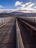 Barmouth järnvägsbro Wales UK royaltyfri bild