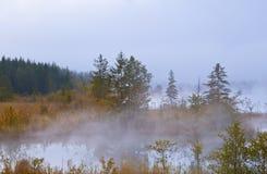 Barmsee in alpi in nebbia di mattina Fotografie Stock