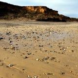 Barmston strandYorkshire kust England Royaltyfria Foton