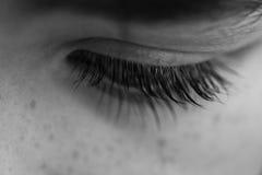 barnögonfranser arkivbild