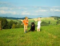 Barn är lek med hunden Arkivbilder