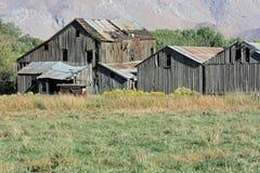 Barn-10 velho--10-08-036 Foto de Stock Royalty Free