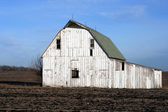 Barn. A barn and a bright blue sky Royalty Free Stock Photo
