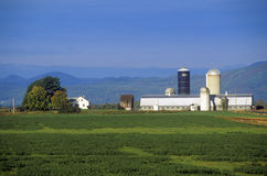 Barn with Adirondacks in background on Scenic Route 22A, VT Royalty Free Stock Images