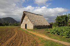 Barn for air-curing of tobacco Royalty Free Stock Image