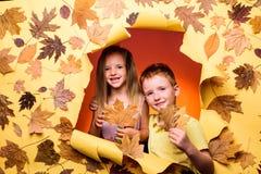 Barn annonserar din produkt och tjänst Höstlynnet och vädret är varma, och soligt och regn är möjligt arkivbilder