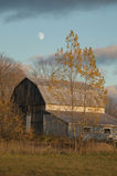 Barn in autumn with yellow trees and moon royalty free stock image
