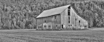 Barn Black And White. Old barn shot in HDR and converted to black and white Royalty Free Stock Images