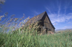 Barn on a breezy MT day Royalty Free Stock Photography