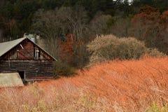 Barn in the Brush stock photos