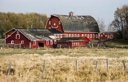 Barn and buildings Stock Photos
