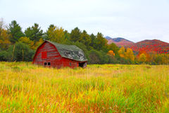 A barn in the colors of fall. An abandoned barn in the Adirondacks NY surrounded by the colors of the fall, creates a majestic and fresh environment Stock Images