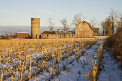 Barn and Corn Field. A barn in a corn field in Winter Stock Photography