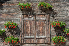 Barn door decorated with flowers Royalty Free Stock Photo