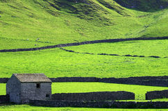 Barn with dry stone walls in the Peak District (England) Stock Image