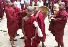 barn för burma monksmyanmar novis royaltyfri fotografi