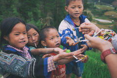 Barn för etnisk minoritet för H-`-mong på Maj 24, 2017 i Mucangchai, Vietnam H-`-mong är den 8th största folkgruppen i Vietnam Royaltyfria Foton