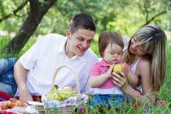 barn för familjpicknick tre Royaltyfri Fotografi