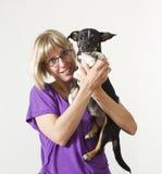 barn för hundholdingkvinna royaltyfria bilder