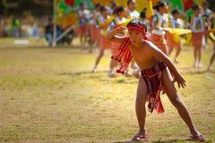 barn för igorot för blomma för pojkedansfestival Arkivbild