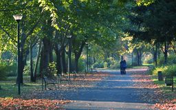 barn för promenad för eftermiddagparförälskelse Royaltyfria Bilder