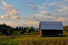 Barn, Farmland and Mount Adams stock image