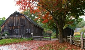 Barn, fence, and red maple leaves Stock Images