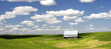 Barn in a field in the Palouse. Stock Photo