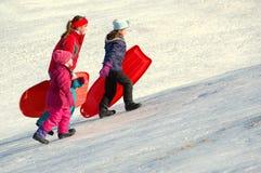 barn flera som sledding Royaltyfria Bilder