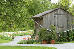 Barn and flowering tulips Stock Photos