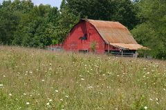 Barn With Flowers Stock Photography