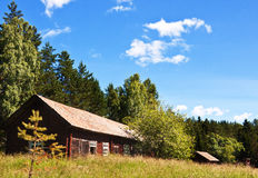 Barn in the forest. Stock Photography