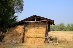 Barn. The barn with the garden background royalty free stock images