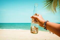 Barn garvad flaska för kvinnahandinnehav med snäckskalet på den tropiska stranden i sommar Arkivbilder