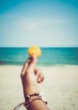 Barn garvade kvinnor räcker det hållande snäckskalet på den tropiska stranden i sommar Fotografering för Bildbyråer