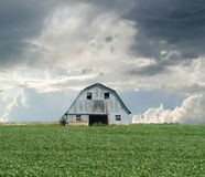 Barn in Green Field Stock Images