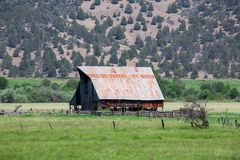 Barn in green pasture. An old barn in a green pasture under a mountain Royalty Free Stock Images