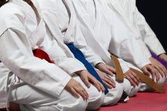 Barn härliga lyckade mång- etiska karateungar i karateposition Royaltyfri Bild