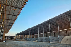 Grain Barn. A barn half full with various types of grain as well as hay. In the background - a cowshed Stock Image