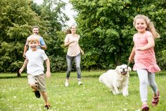 Barn har den roliga gå hunden royaltyfri fotografi