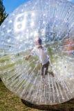 Barn har gyckel i den Zorbing bollen Royaltyfri Foto