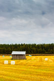 Barn And The Hay Rolls. Autumn work in the hay fields. The rolls are ready royalty free stock photos