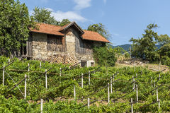 Barn on the hill above Meran Royalty Free Stock Photography