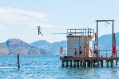 Barn hoppar av dykningbräde in i Okanagan sjön på badfjärden royaltyfria bilder
