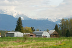 Barn houses and mountains Stock Images
