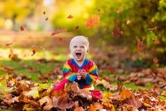 Barn i fallpark Unge med höstsidor Arkivbild