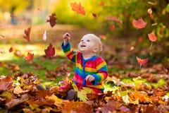 Barn i fallpark Unge med höstsidor Royaltyfri Foto